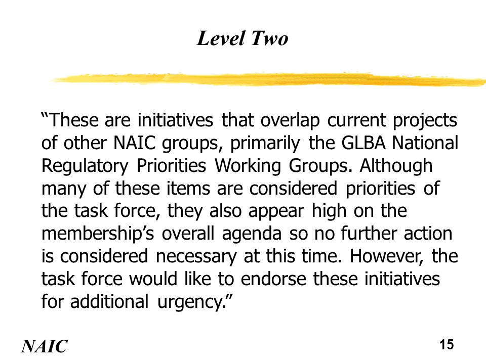 15 Level Two NAIC These are initiatives that overlap current projects of other NAIC groups, primarily the GLBA National Regulatory Priorities Working Groups.