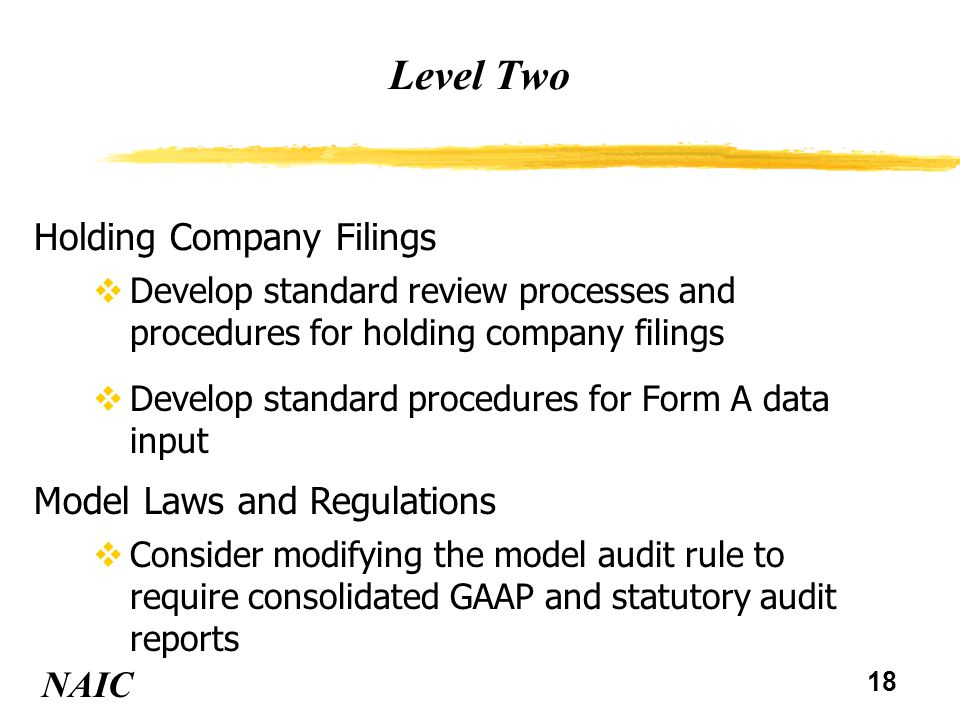 18 Level Two NAIC Holding Company Filings vDevelop standard review processes and procedures for holding company filings vDevelop standard procedures for Form A data input Model Laws and Regulations vConsider modifying the model audit rule to require consolidated GAAP and statutory audit reports