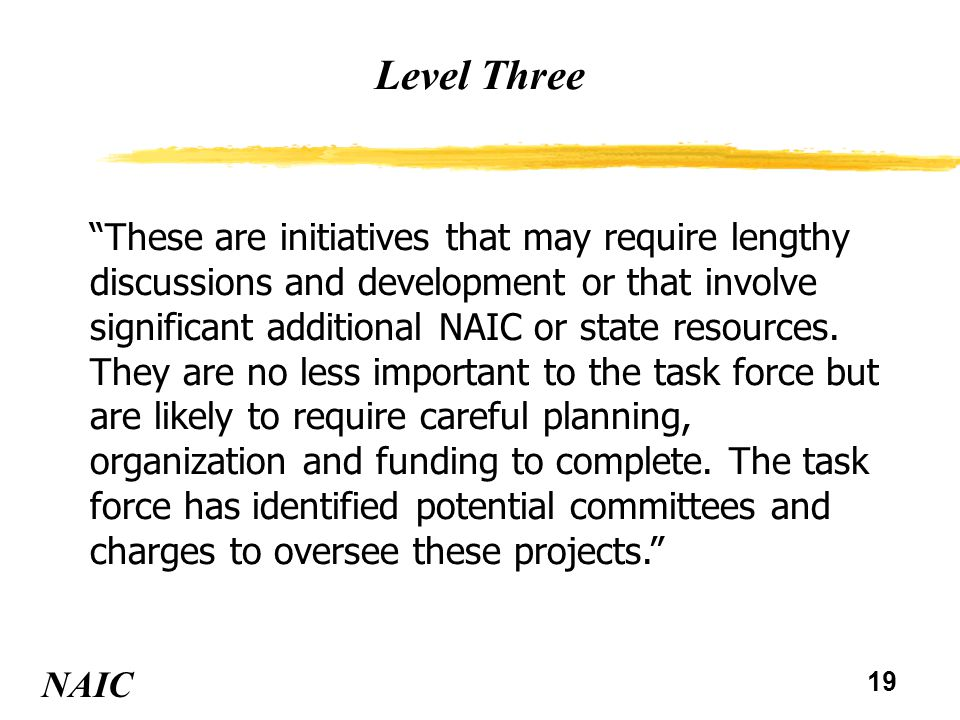 19 Level Three NAIC These are initiatives that may require lengthy discussions and development or that involve significant additional NAIC or state resources.