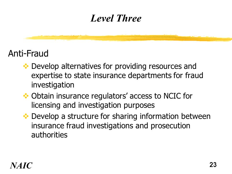 23 Level Three NAIC Anti-Fraud vDevelop alternatives for providing resources and expertise to state insurance departments for fraud investigation vObt