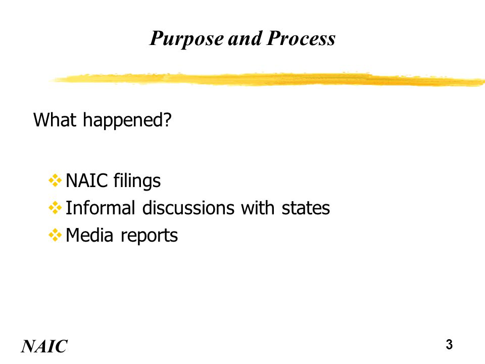 3 Purpose and Process vNAIC filings vInformal discussions with states vMedia reports NAIC What happened