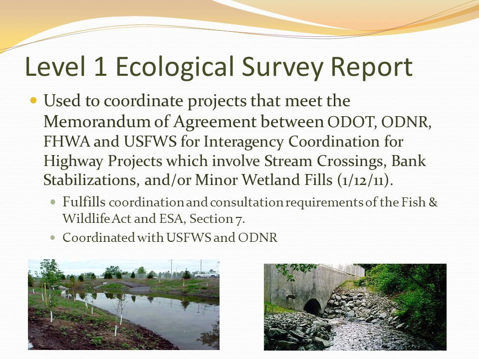 Level 1 Ecological Survey Report Used to coordinate projects that meet the Memorandum of Agreement between ODOT, ODNR, FHWA and USFWS for Interagency Coordination for Highway Projects which involve Stream Crossings, Bank Stabilizations, and/or Minor Wetland Fills (1/12/11).