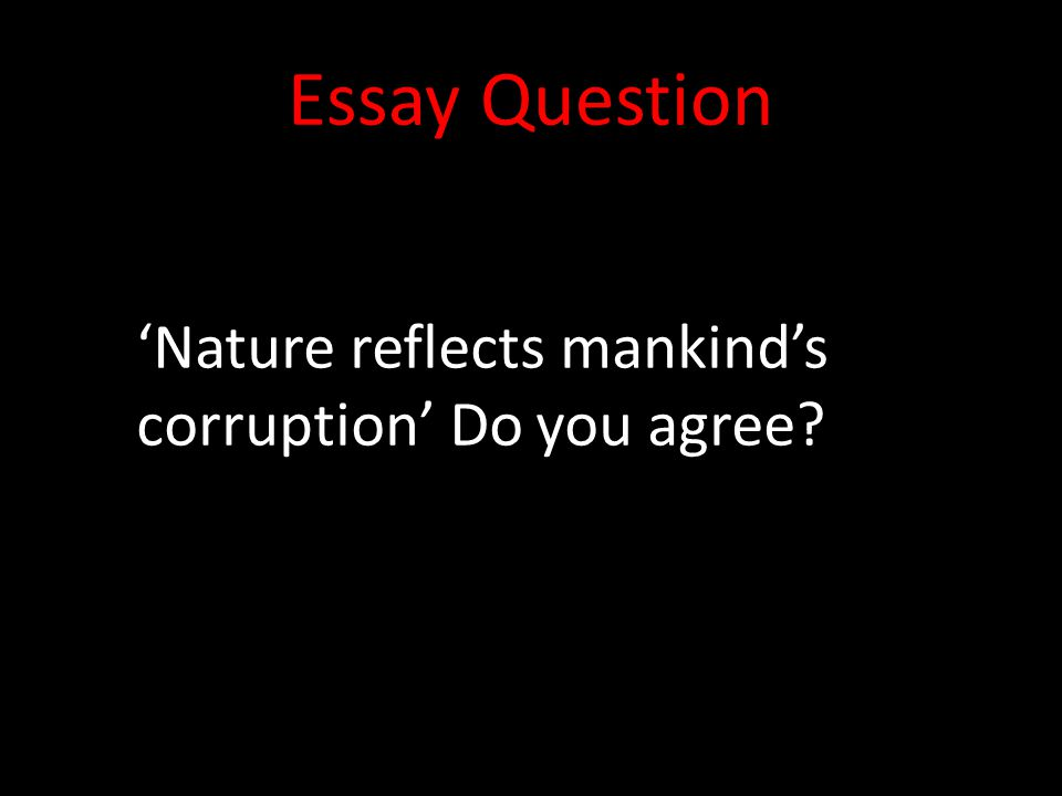 Essay Question 'Nature reflects mankind's corruption' Do you agree?