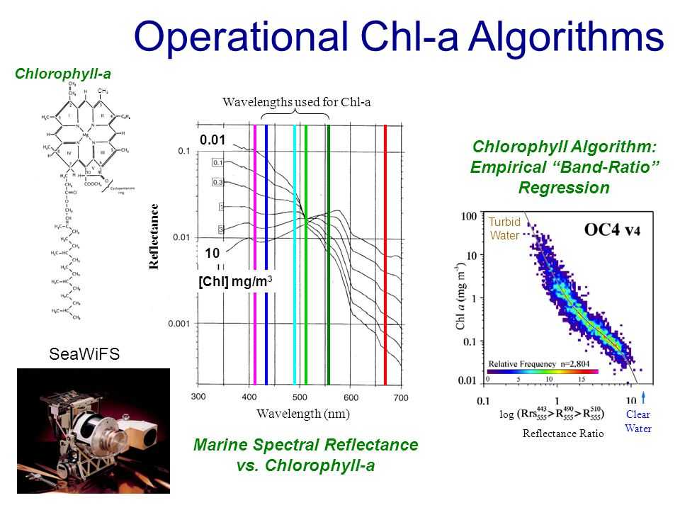 Operational Chl-a Algorithms CH 3 Chlorophyll-a Marine Spectral Reflectance vs.
