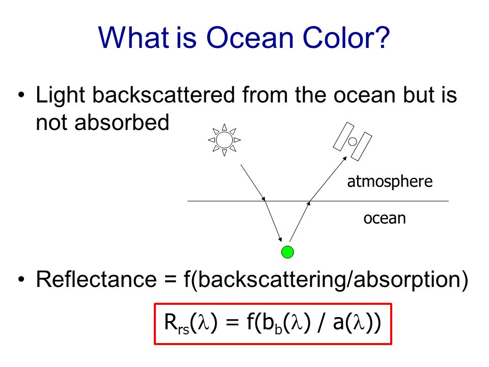 Absorption of Light in Seawater Total abs = water + phyto + CDOM + detritus a( ) = a w ( ) + a ph ( ) + a g ( ) + a det ( ) CDOM phytoplankton water detritus Spectral Shape (no units) Wavelength (nm)