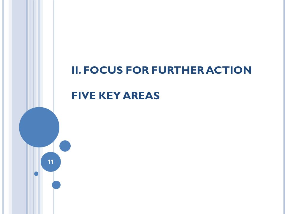 II. FOCUS FOR FURTHER ACTION FIVE KEY AREAS 11