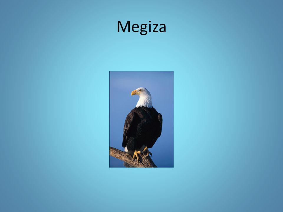 Megiza