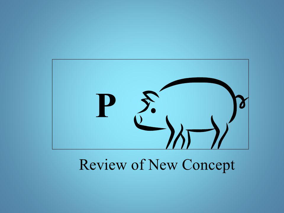 Review of New Concept P