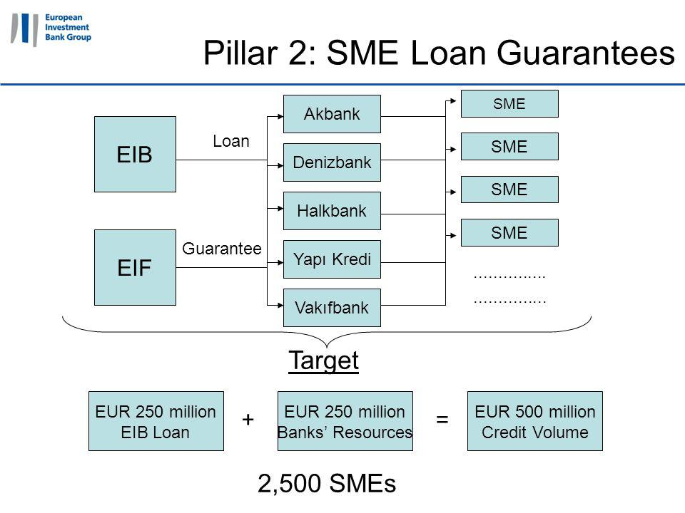 11 April 2011 Pillar 2: SME Loan Guarantees Target 2,500 SMEs EIF Guarantee SME...............