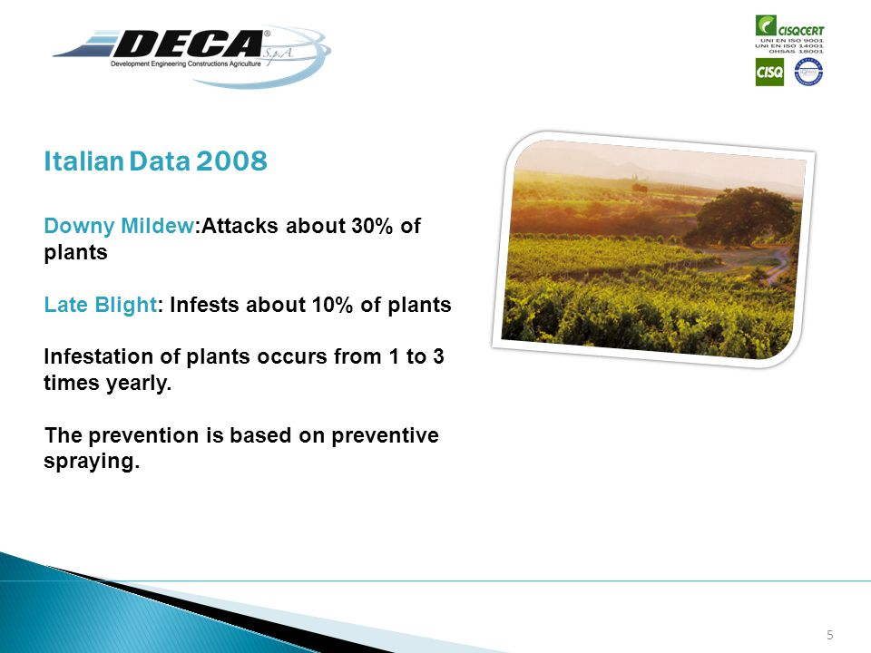 Downy Mildew:Attacks about 30% of plants Late Blight: Infests about 10% of plants Infestation of plants occurs from 1 to 3 times yearly. The preventio