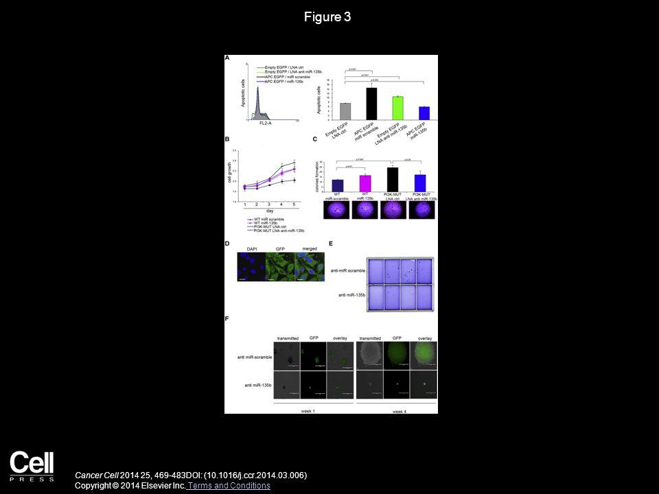 Figure 3 Cancer Cell 2014 25, 469-483DOI: (10.1016/j.ccr.2014.03.006) Copyright © 2014 Elsevier Inc.
