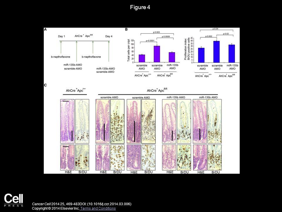 Figure 4 Cancer Cell 2014 25, 469-483DOI: (10.1016/j.ccr.2014.03.006) Copyright © 2014 Elsevier Inc.