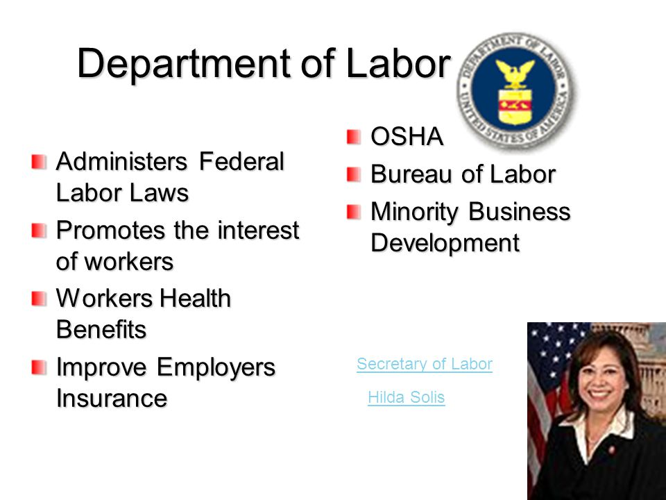 Department of Labor Administers Federal Labor Laws Promotes the interest of workers Workers Health Benefits Improve Employers Insurance OSHA Bureau of