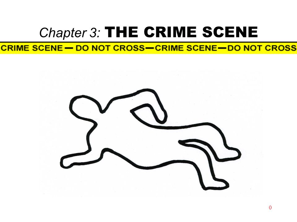 Chapter 3: THE CRIME SCENE 0