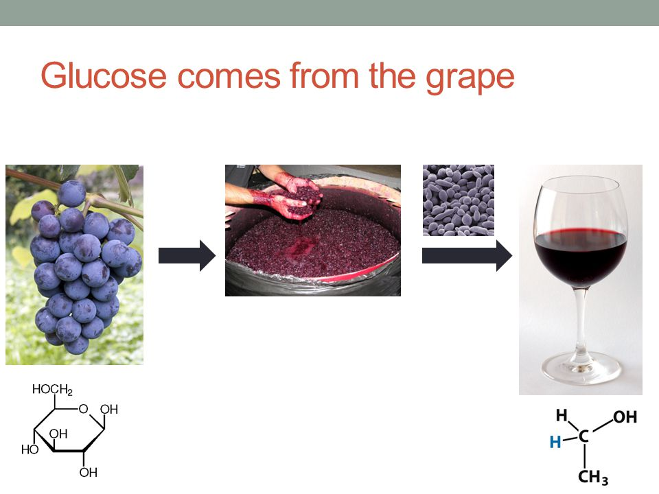Glucose comes from the grape