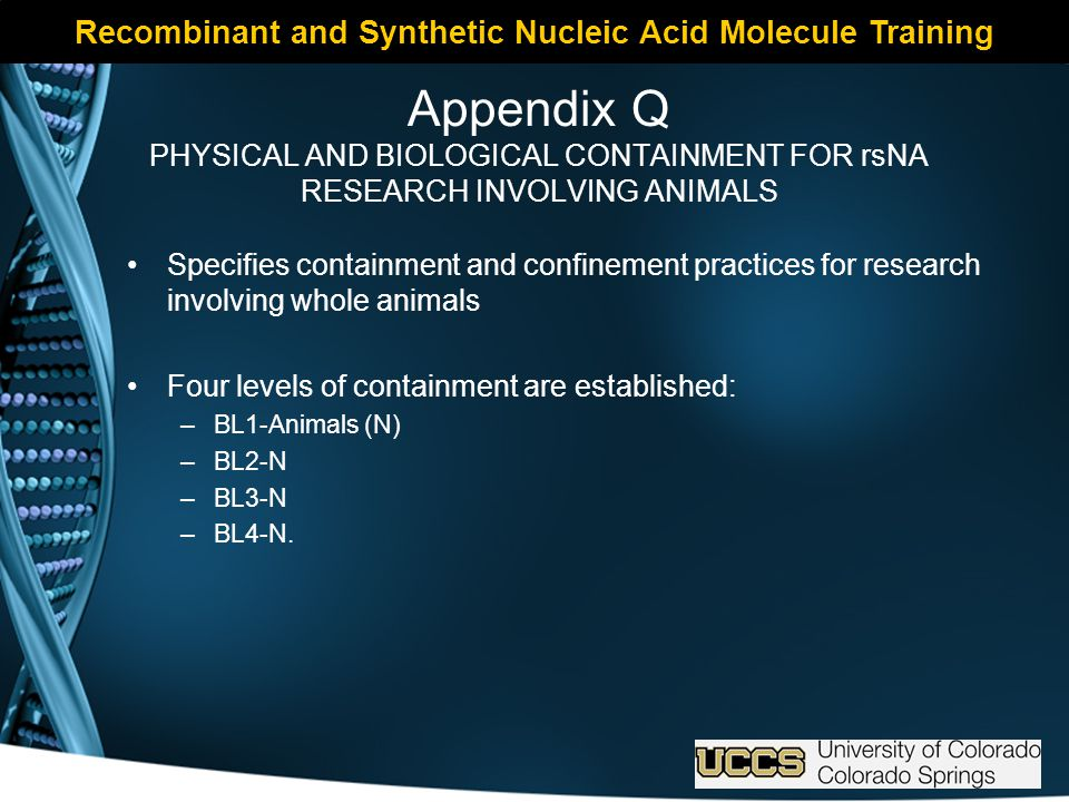 Recombinant and Synthetic Nucleic Acid Molecule Training Appendix Q PHYSICAL AND BIOLOGICAL CONTAINMENT FOR rsNA RESEARCH INVOLVING ANIMALS Specifies containment and confinement practices for research involving whole animals Four levels of containment are established: –BL1-Animals (N) –BL2-N –BL3-N –BL4-N.