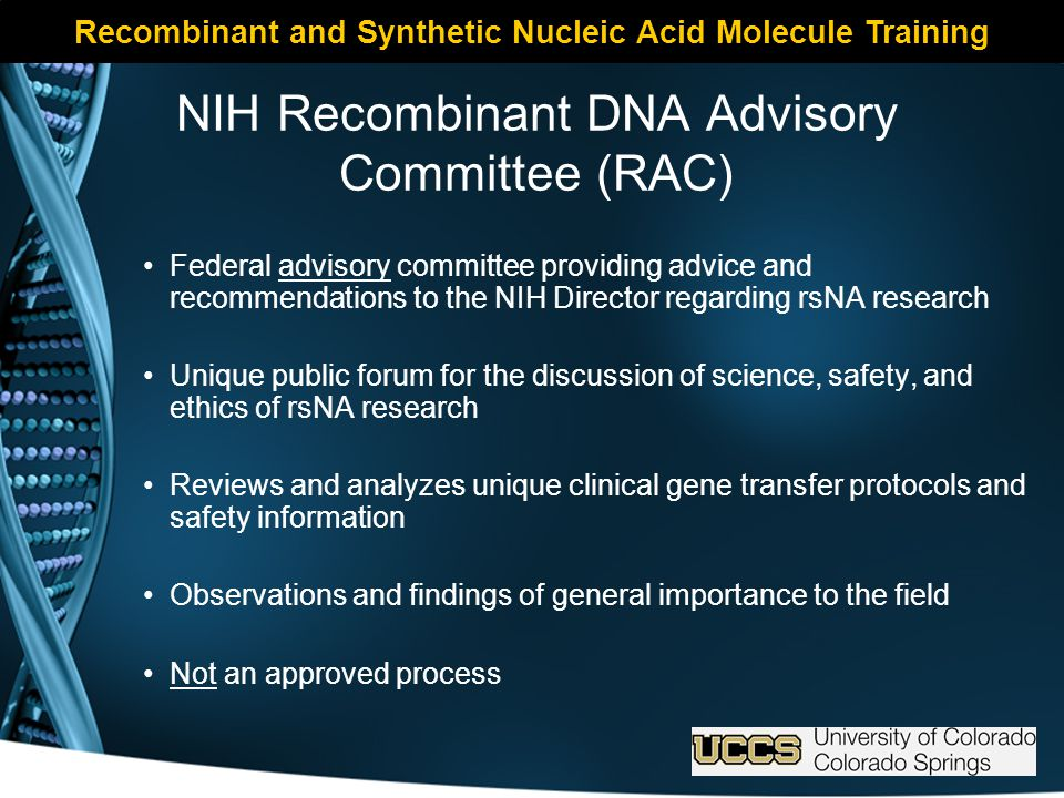NIH Recombinant DNA Advisory Committee (RAC) Federal advisory committee providing advice and recommendations to the NIH Director regarding rsNA research Unique public forum for the discussion of science, safety, and ethics of rsNA research Reviews and analyzes unique clinical gene transfer protocols and safety information Observations and findings of general importance to the field Not an approved process Recombinant and Synthetic Nucleic Acid Molecule Training