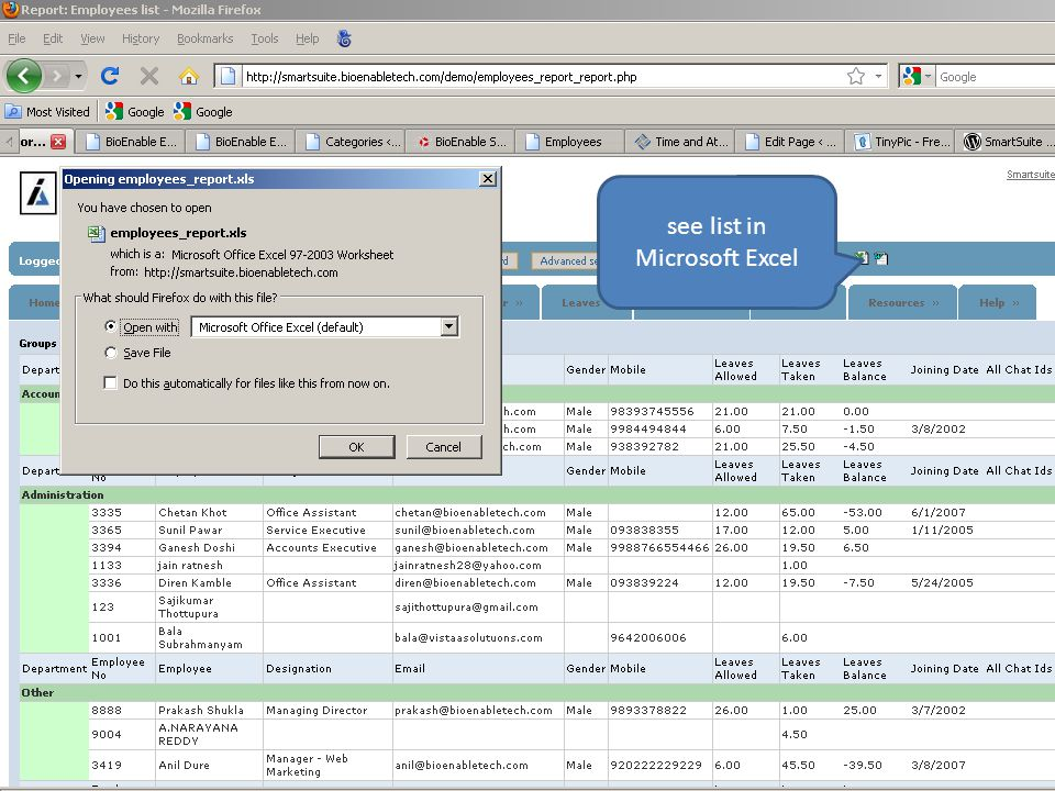 see list in Microsoft Excel