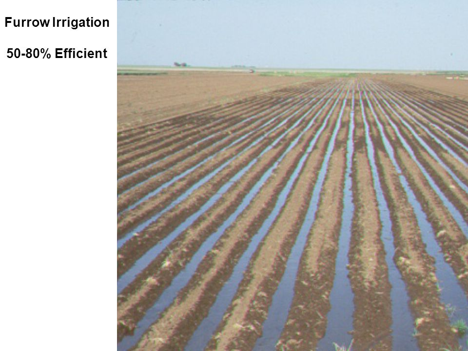 Furrow Irrigation 50-80% Efficient