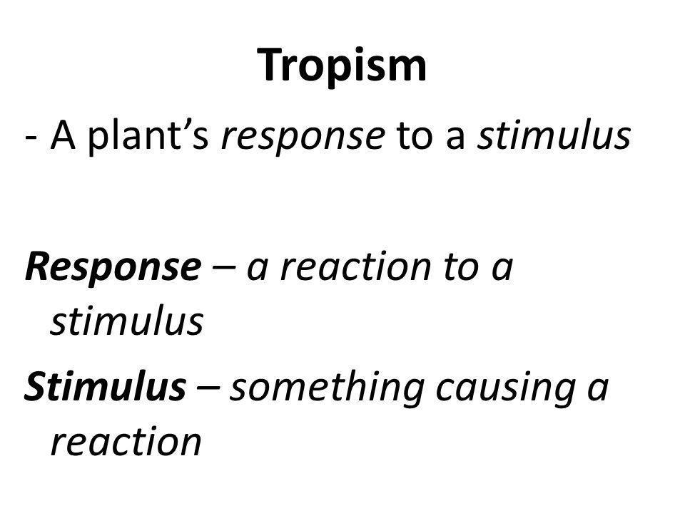 2 Types of Tropism 1- Phototropism -