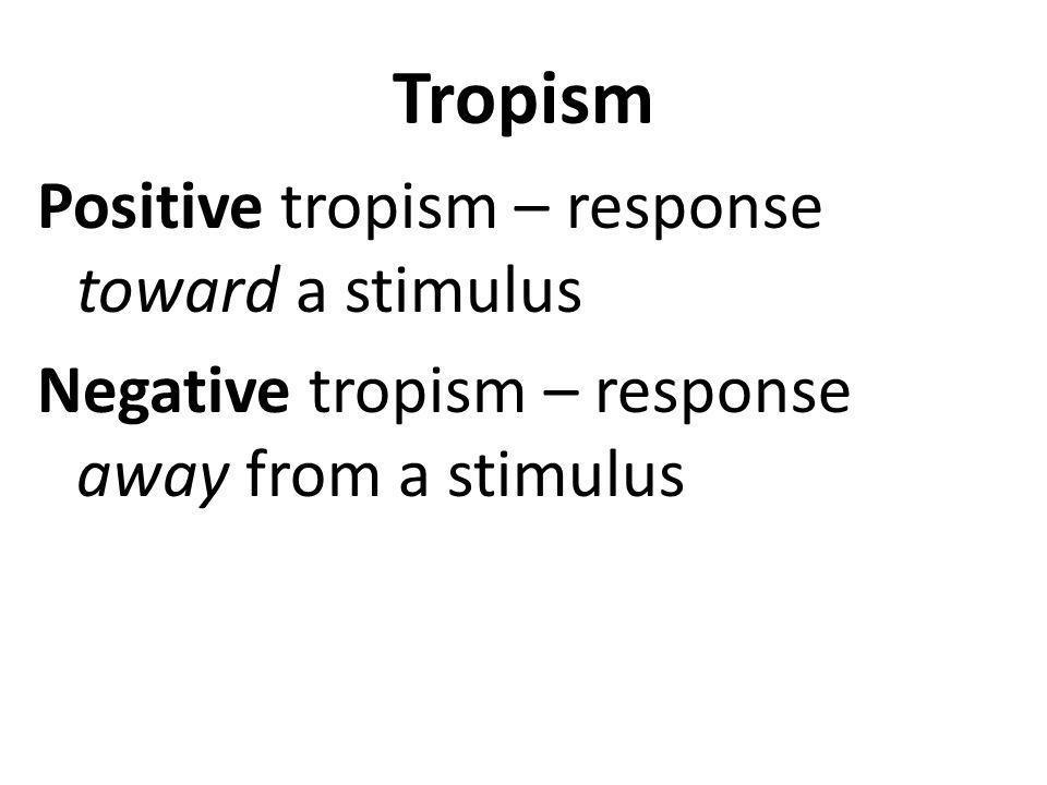Tropism Positive tropism – response toward a stimulus Negative tropism – response away from a stimulus