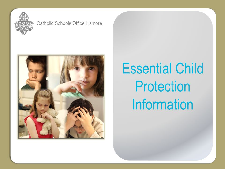 I NTRODUCTION This presentation explains the following key aspects relating to child protection in NSW schools: 1.Allegations involving employees under the Ombudsman Act 1974 - Process - Outcomes - Commission for Children and Young People (CCYP).