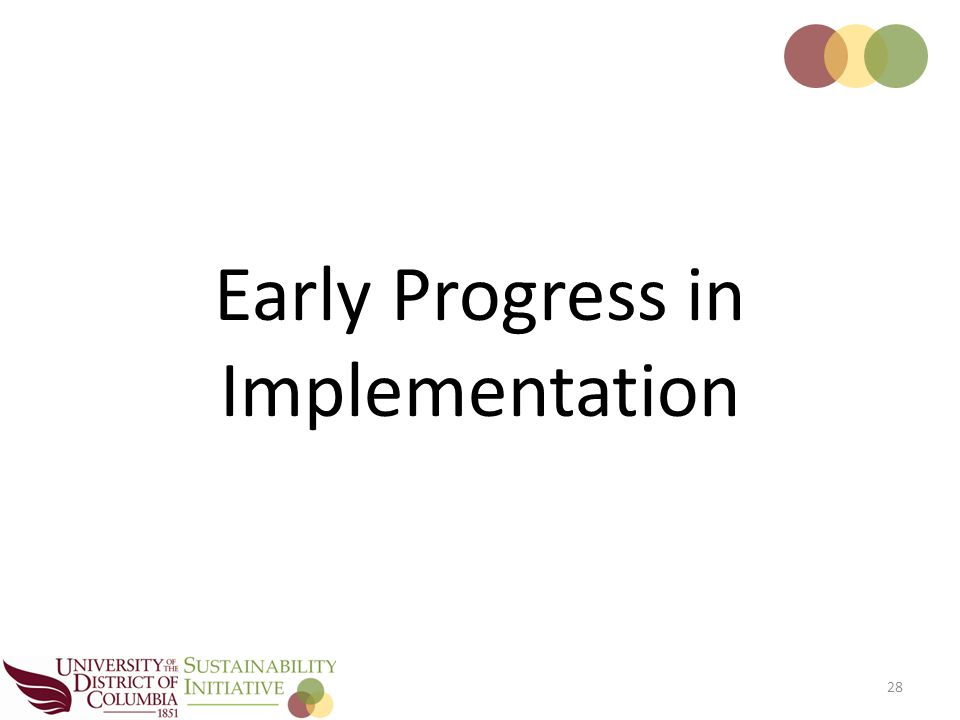 28 Early Progress in Implementation
