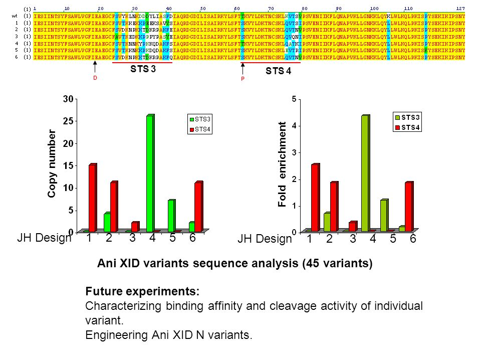 STS 3 STS 4 D Future experiments: Characterizing binding affinity and cleavage activity of individual variant.