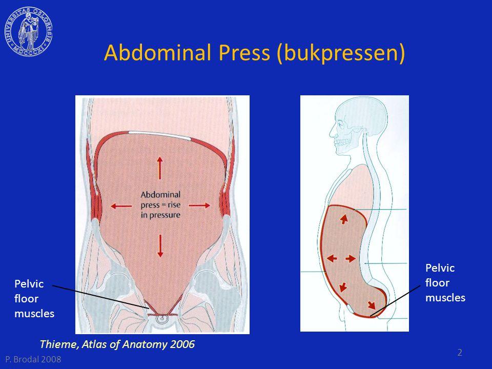 Abdominal Press (bukpressen) Pelvic floor muscles Thieme, Atlas of Anatomy 2006 2 P. Brodal 2008