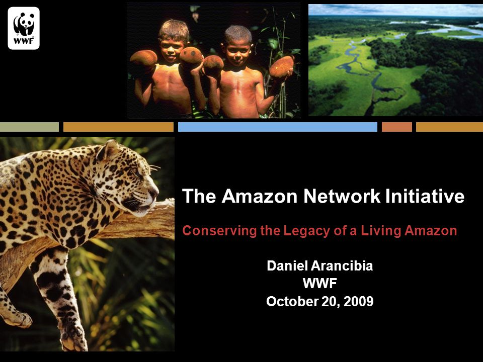 The Amazon Network Initiative Conserving the Legacy of a Living Amazon Daniel Arancibia WWF October 20, 2009