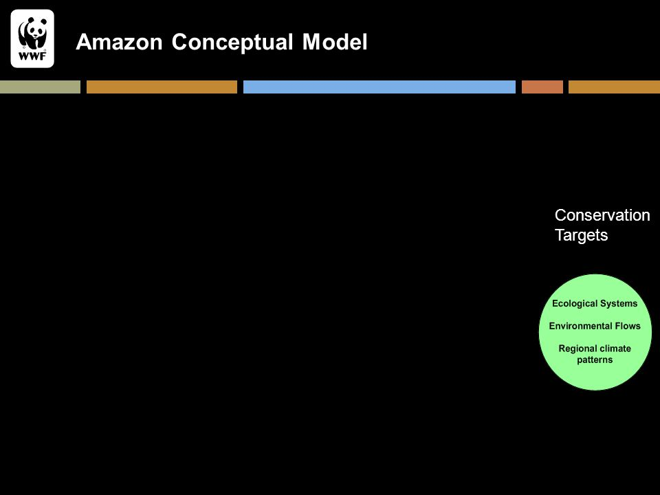 Amazon Conceptual Model Conservation Targets