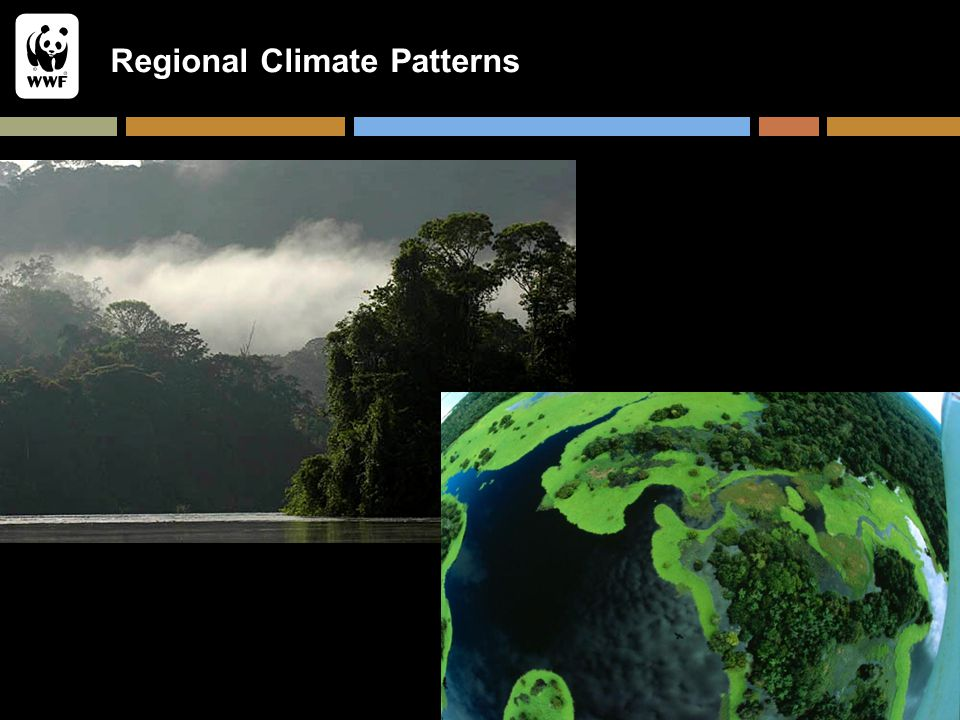 Regional Climate Patterns