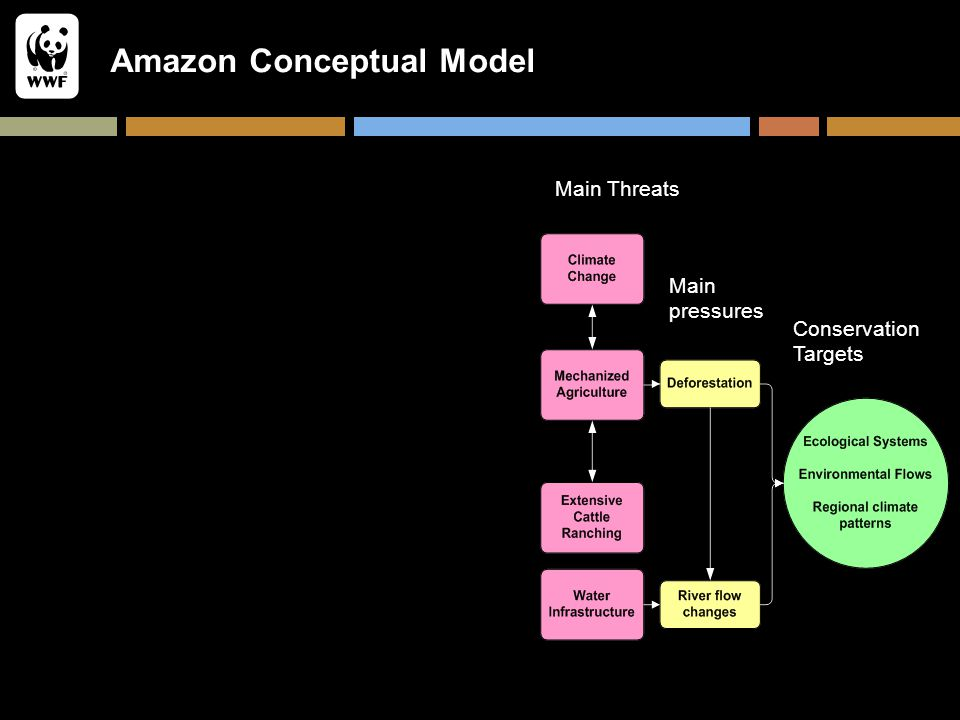 Amazon Conceptual Model Conservation Targets Main pressures Main Threats