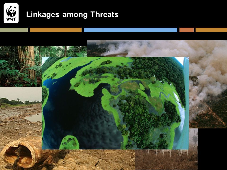 Linkages among Threats