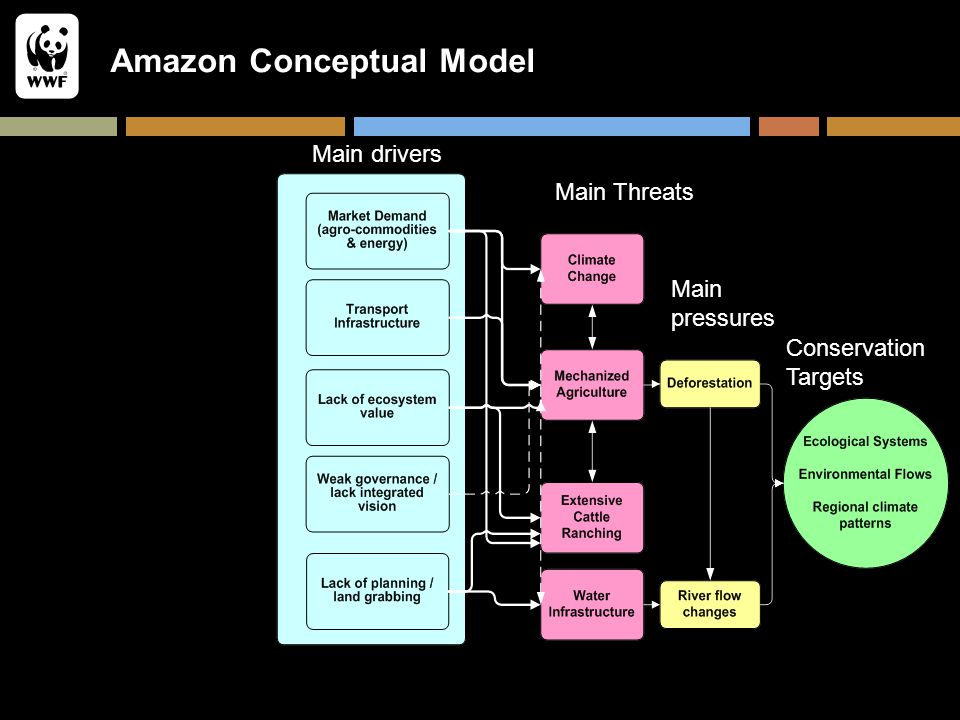 Amazon Conceptual Model Conservation Targets Main pressures Main Threats Main drivers