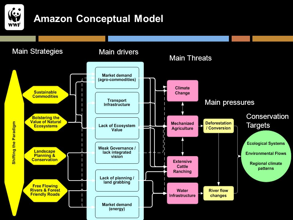 Amazon Conceptual Model Main Strategies Main Threats Main drivers Main pressures Conservation Targets