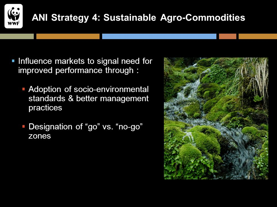 ANI Strategy 4: Sustainable Agro-Commodities  Influence markets to signal need for improved performance through :  Adoption of socio-environmental s