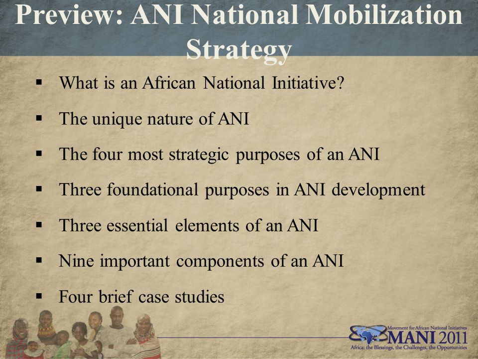 Preview: ANI National Mobilization Strategy  What is an African National Initiative.