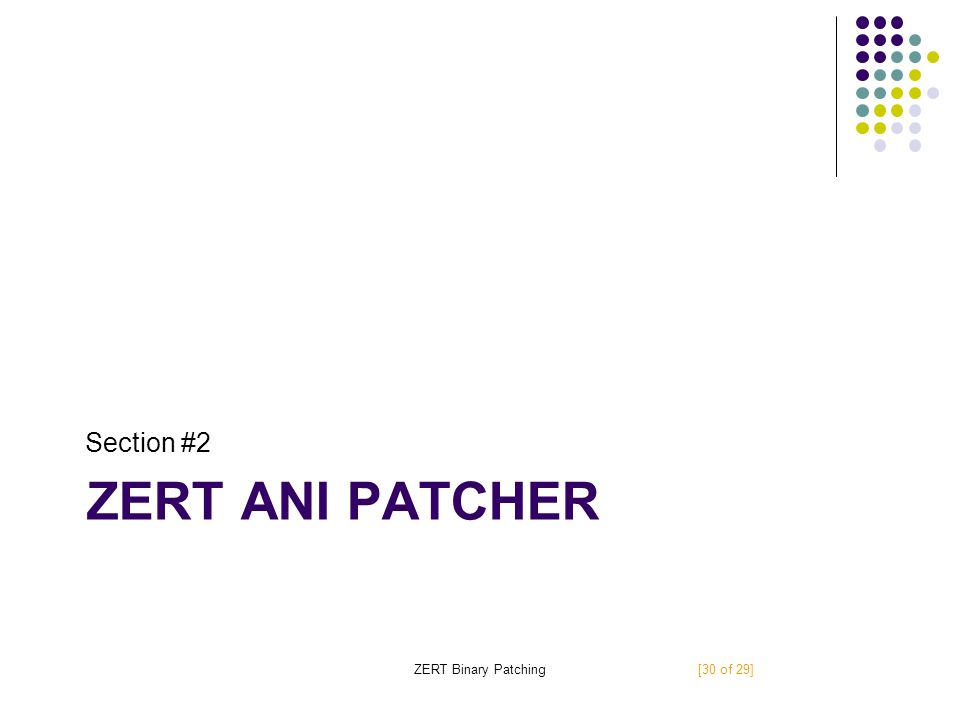 ZERT ANI PATCHER Section #2 ZERT Binary Patching[30 of 29]