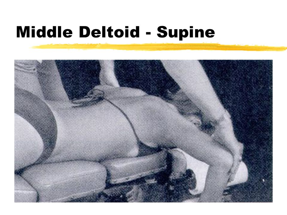 Middle Deltoid - Supine
