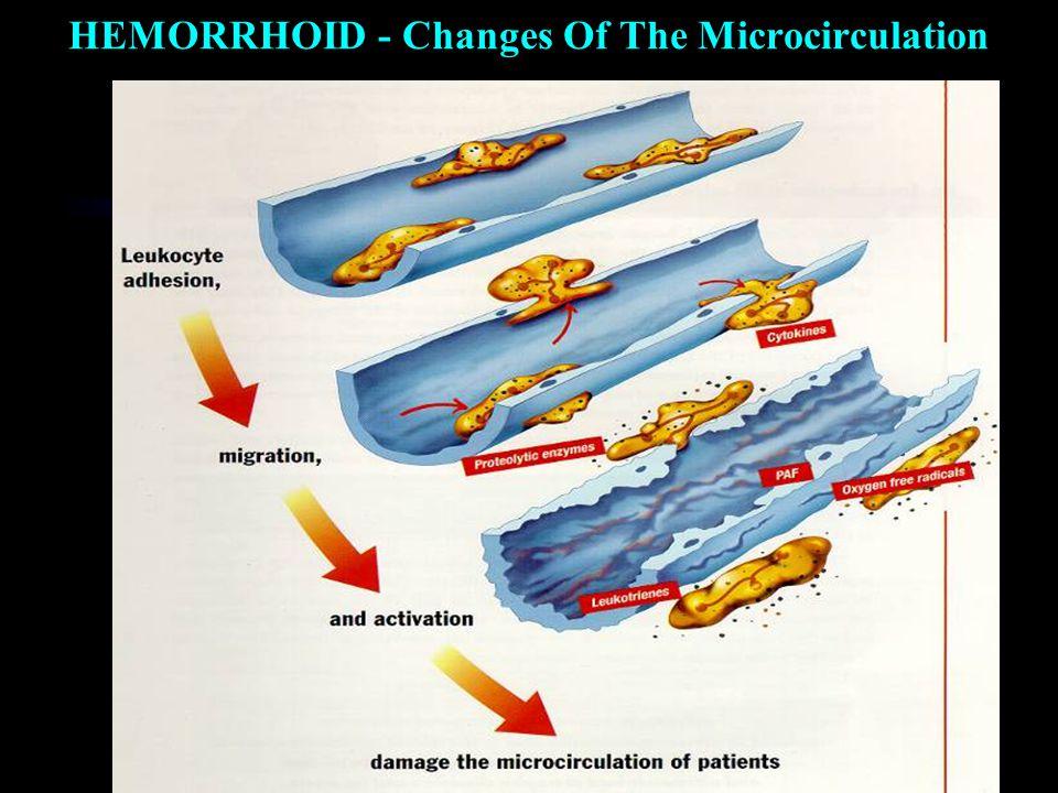 HEMORRHOID Дисфункція артеріовенозного шунта  Ламкість капілярів  Гіперпроникність Сповільнення повернення венозної крові та виникнення венозної гіпертензії Венозний стаз Mікросудинний стаз