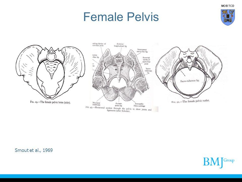 Female Pelvis Smout et al., 1969 MOB TCD