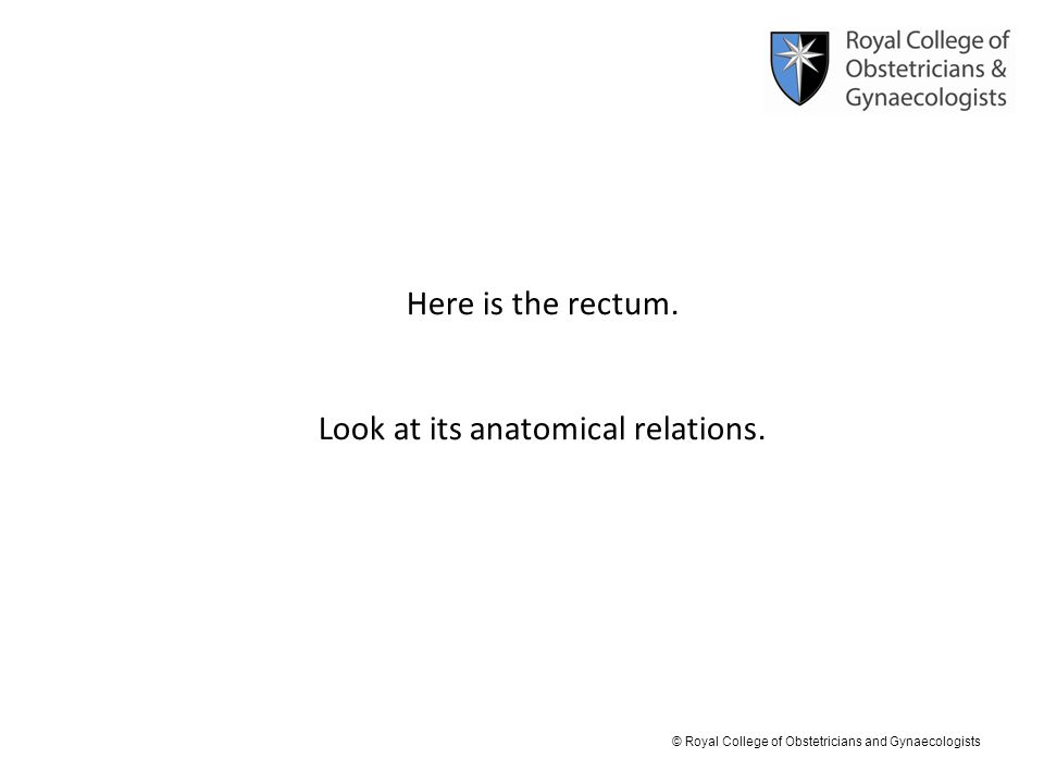 © Royal College of Obstetricians and Gynaecologists Here is the rectum. Look at its anatomical relations.