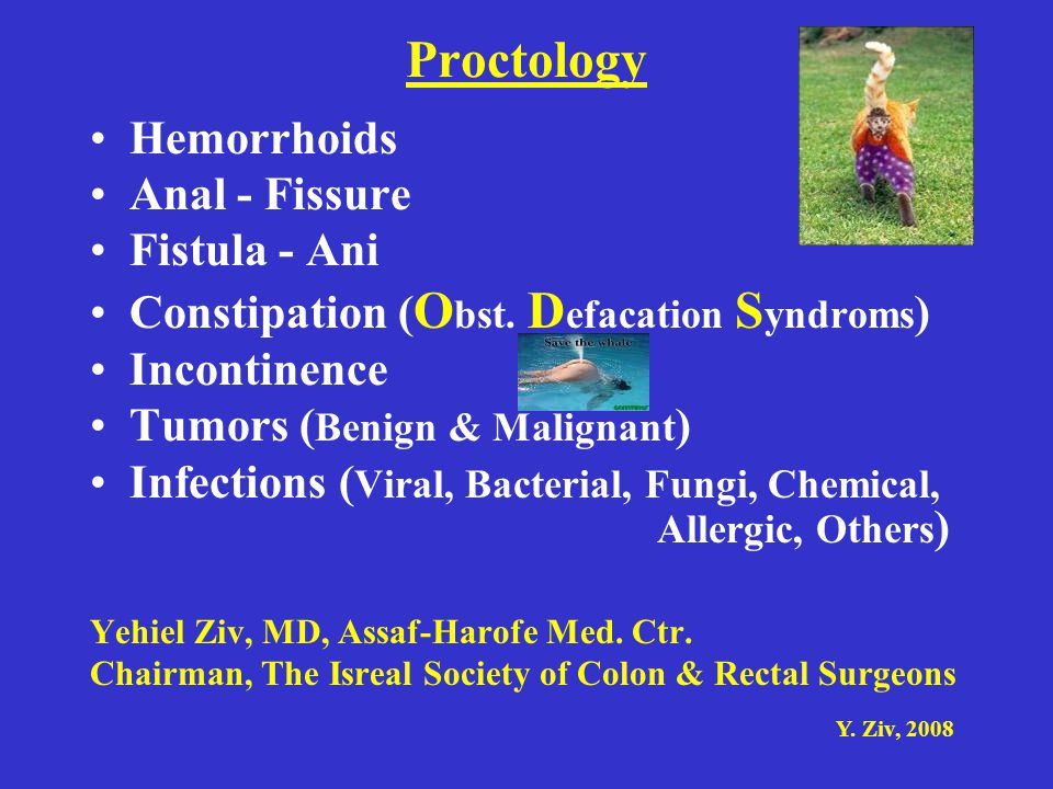 Y. Ziv, 2008 Proctology Hemorrhoids Anal - Fissure Fistula - Ani Constipation ( O bst. D efacation S yndroms ) Incontinence Tumors ( Benign & Malignan
