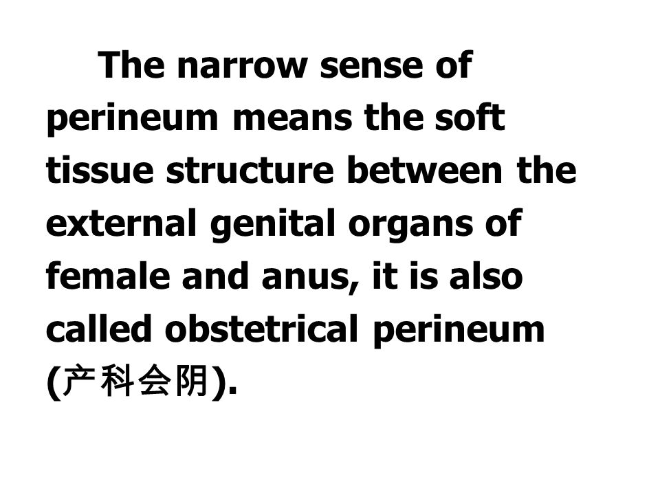 The perineum has broad and narrow senses of perineum. The broad sense of perineum means the all soft tissues that close the inferior orifice of the pe