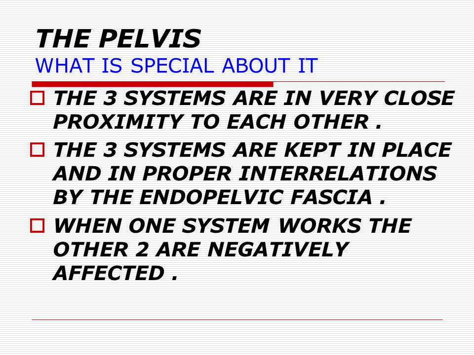 THE PELVIS WHAT IS SPECIAL ABOUT IT?  NARROW BONY CONTAINER.  CONTAINS 3 DIFFERENT DISTENSIBLE SYSTEMS.  THEY ARE DISTENSIBLE TO MANY MULTIPLES OF