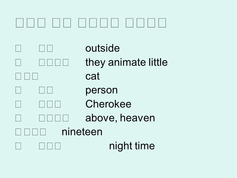 outside they animate little cat person Cherokee above, heaven nineteen night time