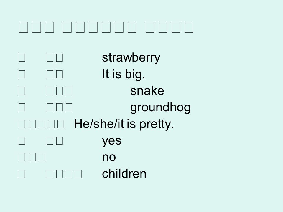 strawberry It is big. snake groundhog He/she/it is pretty. yes no children