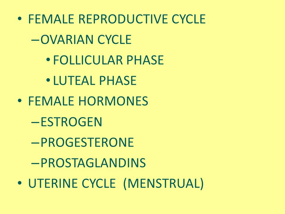 FEMALE REPRODUCTIVE CYCLE – OVARIAN CYCLE FOLLICULAR PHASE LUTEAL PHASE FEMALE HORMONES – ESTROGEN – PROGESTERONE – PROSTAGLANDINS UTERINE CYCLE (MENS
