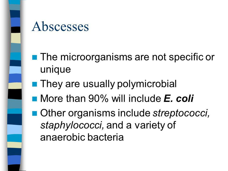 Abscesses The microorganisms are not specific or unique They are usually polymicrobial More than 90% will include E. coli Other organisms include stre